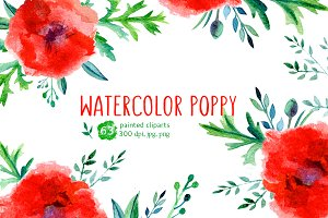 Watercolor Poppy Collection