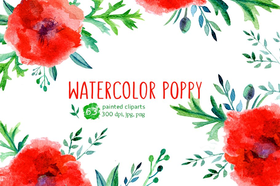 Watercolor Poppy Collection ~ Illustrations ~ Creative Market