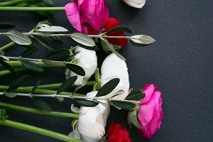 Ranunculus, flowers