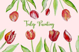 Set of illustrations of tulips