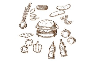 Sketch of tasty burger ingredients
