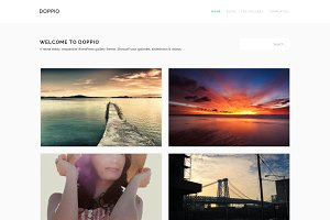 Doppio - Retina WordPress Theme