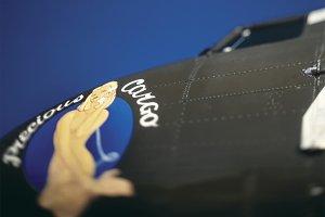 Precious Cargo Plane Nose Art