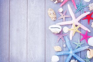 starfish and sea shells on wooden board