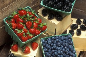 Berries for Market