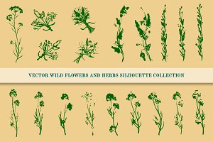 Wild Flowers and Herbs Set