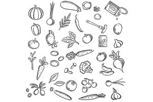 Healthy vegetables sketches