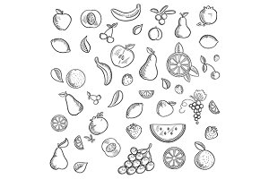 Fruits and berries sketched icons