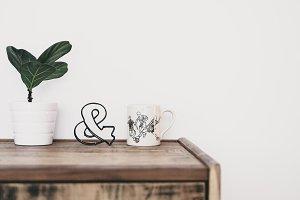 Plant and mug