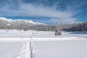 Cottages in winter landscape
