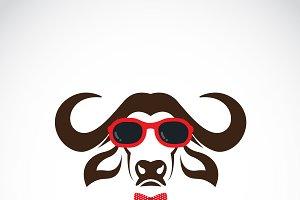 Buffalo wearing sunglasses