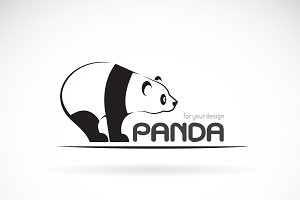 Vector image of an panda design