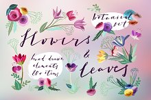 Flowers & Leaves Vector Set