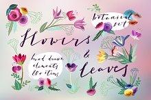 Flowers & Leaves Vector Set