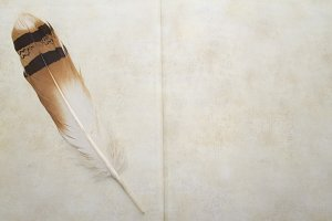 Feather and antique book