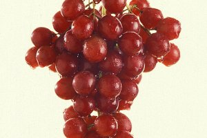 Red Grapes - Isolated
