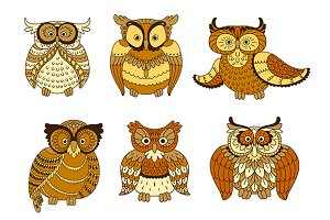 Cartoon forest owl birds