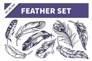 Feather Hand Drawn Sketch Set