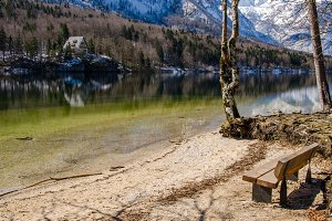 Lakeside with a bench