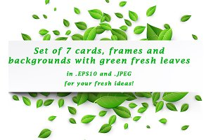 Set of cards with green fresh leaves