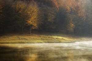 Lake in autumn golden light