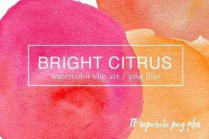 Bright Citrus Watercolor Clipart PNG