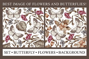 Set Butterfly Flowers Background