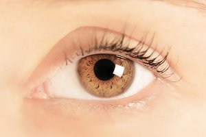 Feminine brown eye close-up.
