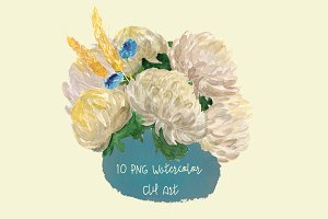 10 Watercolor Chrysantemums Clip Art