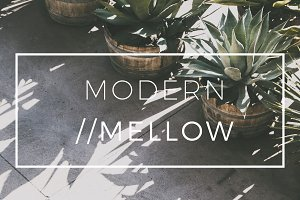 Modern/Mellow Matte Lightroom Preset