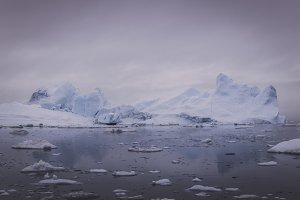 Arctic Memories of Greenland