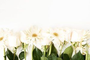 Creamy White Gerbera Daisies, Roses