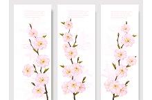 Beautiful Sakura Branch Banners