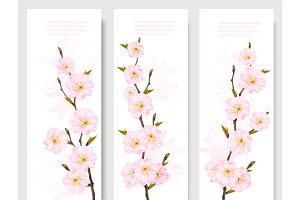 Beautiful Sakura Branch Banners