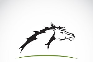 Vector image of an horse head