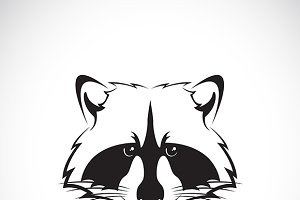 Vector image of a raccoon face