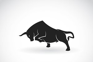 Vector image of an bull