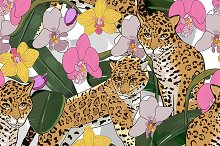 № 90 Orchid and jaguar
