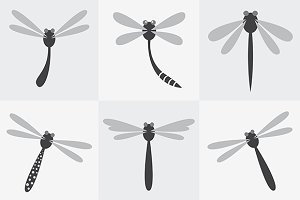 Set of vector dragonfly icons