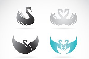 Vector set of swan design