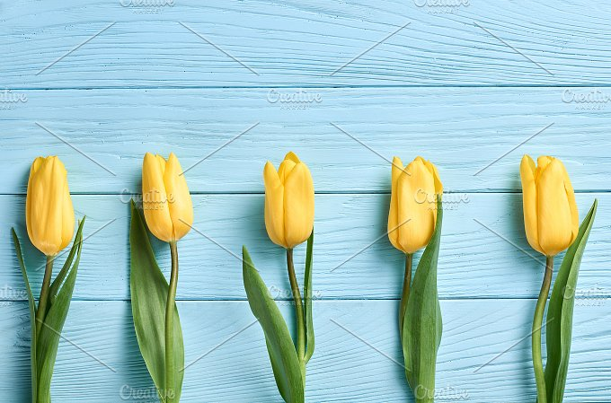 Mothers Day background.Tulips yellow on blue wood - Holidays