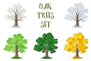 Set of Oak Trees and Landscapes
