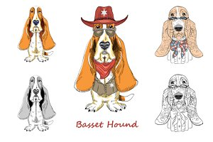 Dog Basset Hound breed SET