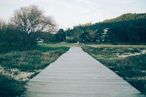 walk on the park