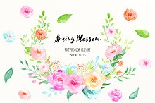 Watercolor Clipart Spring Blossom