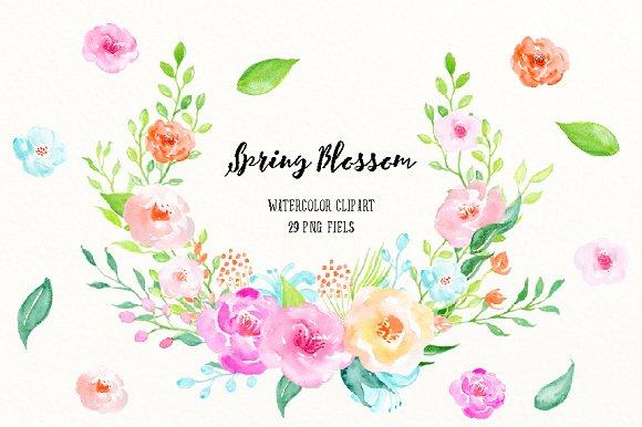 Watercolor Clipart Spring Blossom Illustrations Creative Market
