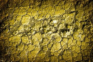Texture of golden withered earth