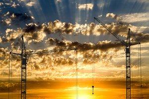 Hoisting cranes on golden sunset