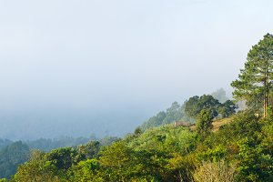 Viewpoint at Ang Khang mountains