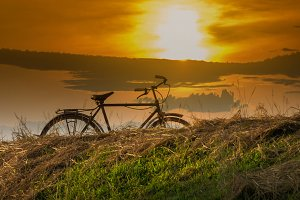 Bicycle at sunset in the park